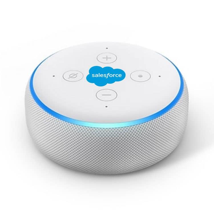 Custom Amazon Echo Dot 3rd Generation
