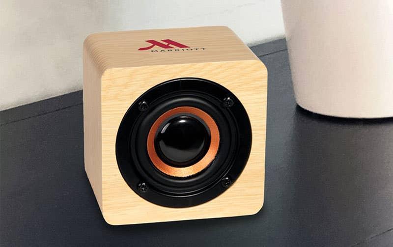 Custom Bamboo Speaker