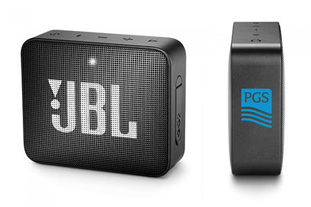 Custom JBL Speakers
